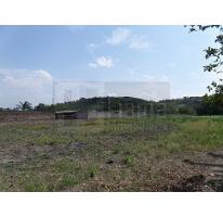 Foto de terreno habitacional en venta en  , villas de guadalupe, xalisco, nayarit, 2625034 No. 01