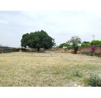 Foto de terreno habitacional en renta en  , vista hermosa, cuernavaca, morelos, 2635750 No. 01