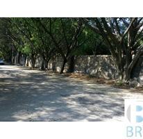Foto de terreno habitacional en venta en  , vista hermosa, cuernavaca, morelos, 4430026 No. 01
