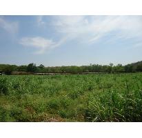 Foto de terreno comercial en venta en  x, tehuixtla, jojutla, morelos, 2547969 No. 01