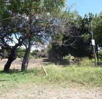 Foto de terreno comercial en venta en x x, alpuyeca, xochitepec, morelos, 0 No. 01