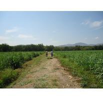 Foto de rancho en venta en x x, tehuixtla, jojutla, morelos, 0 No. 01
