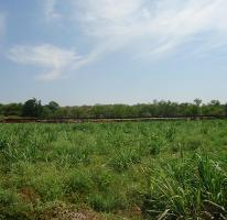Foto de rancho en venta en x x, tehuixtla, jojutla, morelos, 4300256 No. 01