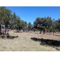 Foto de terreno habitacional en venta en  00, san josé texopa, xaltocan, tlaxcala, 2655609 No. 01