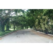 Foto de terreno habitacional en venta en  , xcanatún, mérida, yucatán, 2588632 No. 01