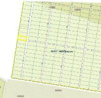 Foto de terreno habitacional en venta en  , xcunyá, mérida, yucatán, 1228799 No. 02