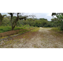 Foto de terreno habitacional en venta en  , xico, xico, veracruz de ignacio de la llave, 1125409 No. 01