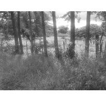 Foto de terreno habitacional en venta en  , xico, xico, veracruz de ignacio de la llave, 2636191 No. 01