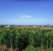 Foto de terreno habitacional en venta en, xochitengo, cuautla, morelos, 2218468 no 01