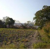 Foto de terreno habitacional en venta en Xoxocotla, Puente de Ixtla, Morelos, 1637515,  no 01