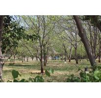 Foto de terreno habitacional en venta en  , y, parras, coahuila de zaragoza, 1780720 No. 01