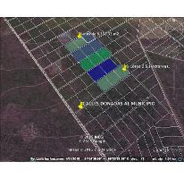 Foto de terreno habitacional en venta en  , yaxkukul, yaxkukul, yucatán, 1407239 No. 01