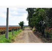 Foto de terreno habitacional en venta en  , yecapixtla, yecapixtla, morelos, 2841257 No. 01