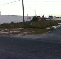 Foto de terreno comercial en venta en  , yucalpeten, progreso, yucatán, 3043117 No. 01