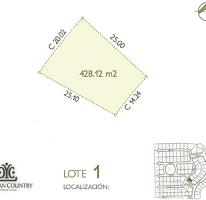 Foto de terreno habitacional en venta en  , yucatan, mérida, yucatán, 1719468 No. 01