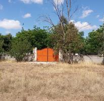 Foto de rancho en venta en  , zona centro, chihuahua, chihuahua, 0 No. 01