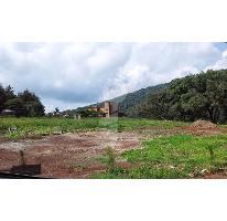Foto de terreno habitacional en venta en  , zurumbeneo, charo, michoacán de ocampo, 2263424 No. 01