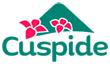 Id 11652561, logo de cuspide