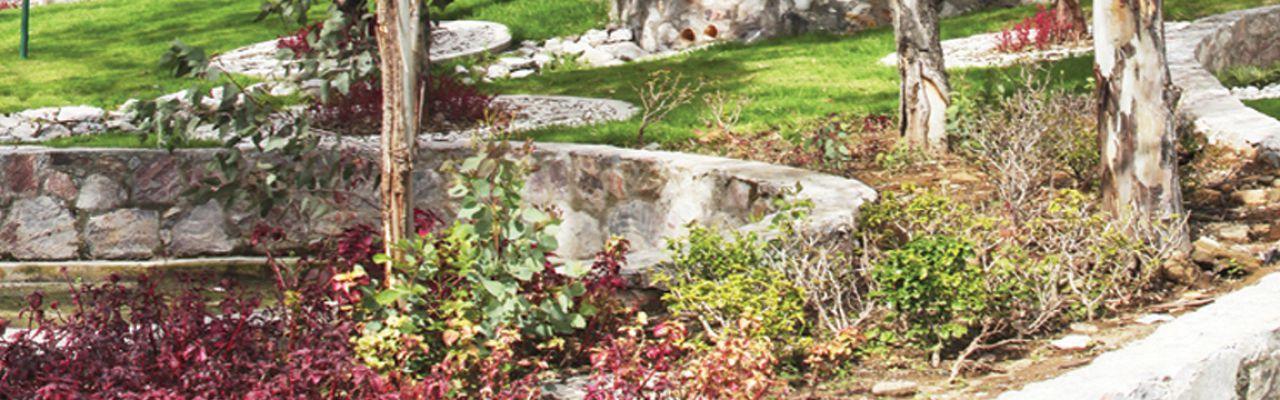 Bosque sanctorum, id 1558207, áreas verdes jardinadas, 215