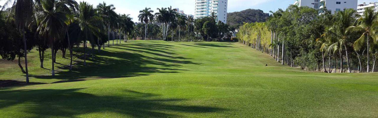 El palmar tres vidas, id 1510641, club de golf tres vidas, 65