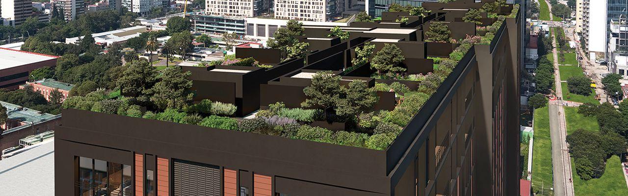 Livix, id 4786301, roof garden, 929